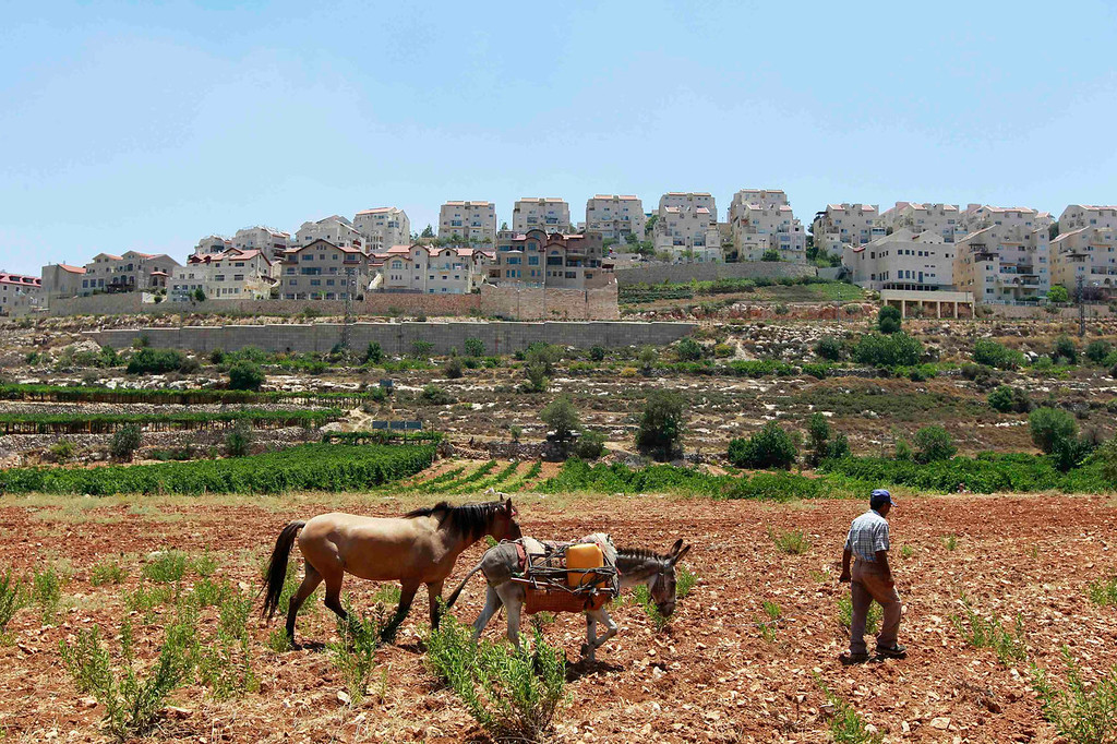. A Palestinian walks on a field with a donkey and a horse in front of the West Bank Jewish settlement of Efrat, near Bethlehem July 25, 2013. Israeli and Palestinian officials put forward clashing formats for peace talks due to resume in Washington on Monday for the first time in nearly three years after intense U.S. mediation. It is unclear how the United States hopes to bridge the core issues in the dispute, including borders, the future of Jewish settlements on the West Bank, the fate of Palestinian refugees and the status of Jerusalem. Picture taken July 25, 2013. REUTERS/Baz Ratner
