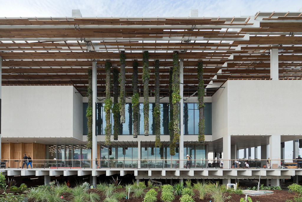 . The new Perez Art Museum, on Biscayne Bay in Miami, is set on stilts to avoid flood dangers. Photo by Iwan Baan, provided by the Perez Art Museum.