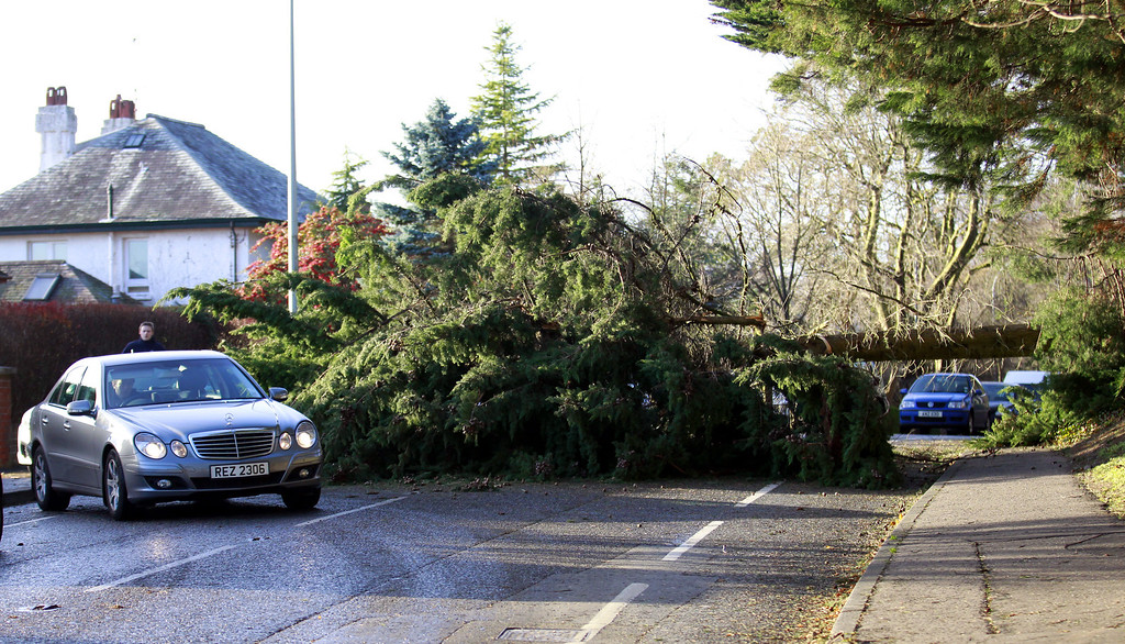 . A fallen tree blocks a road in South Belfast, Northern Ireland, Thursday, Dec. 5, 2013. Much of northwestern Europe braced for a storm that was expected to bring flooding to coastal areas.   (AP Photo/Peter Morrison)