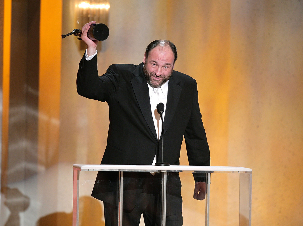 """. LOS ANGELES - JANUARY 27:  Actor James Gandolfini accepts the Outstanding Performance by a Male Actor in a Drama Series for \""""The Sopranos\"""" onstage during the 14th annual Screen Actors Guild awards held at the Shrine Auditorium on January 27, 2008 in Los Angeles, California.  (Photo by Kevin Winter/Getty Images)"""