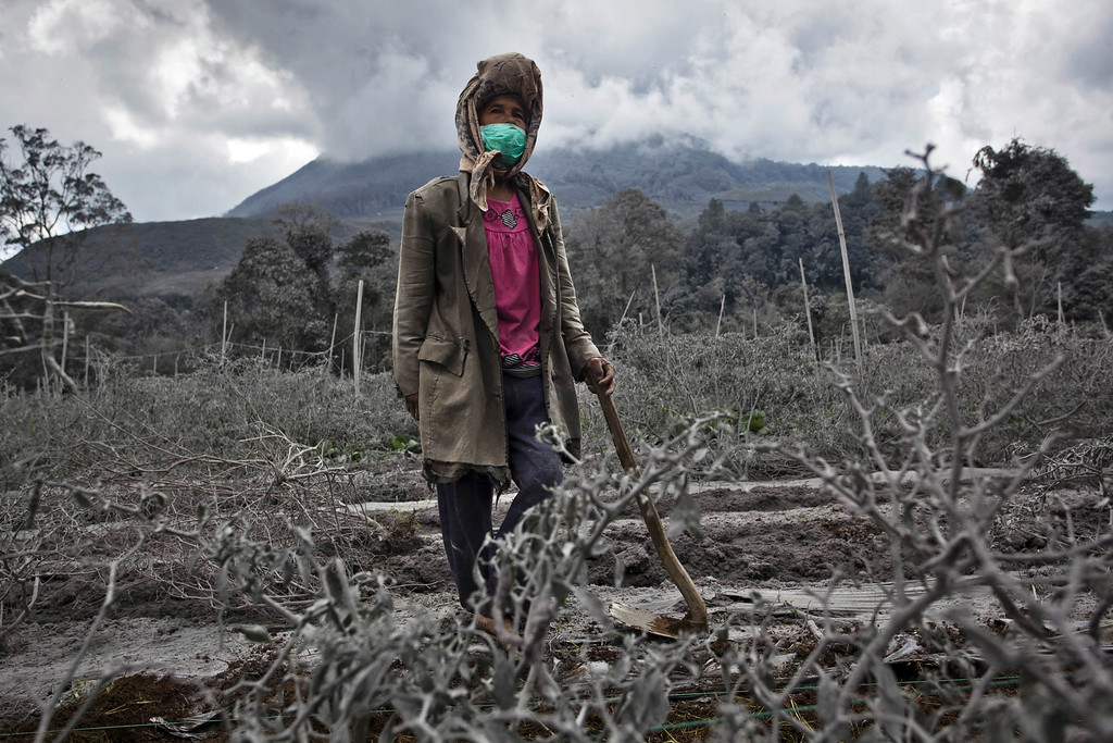 . A woman stands in her field, which has been covered by ash from the eruption of mount Sinabung in Sigarang Garang village on November 25, 2013 in Karo district, North Sumatra, Indonesia.  (Photo by Ulet Ifansasti/Getty Images)