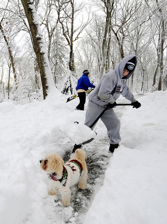 . Jack Katovitz, 14, clears a path for Lucky, a Yorkie Poodle, on his driveway that was covered with over a foot of snow after a storm on Saturday, Feb. 9, 2013, in Lattingtown, N.Y. (AP Photo/Kathy Kmonicek)