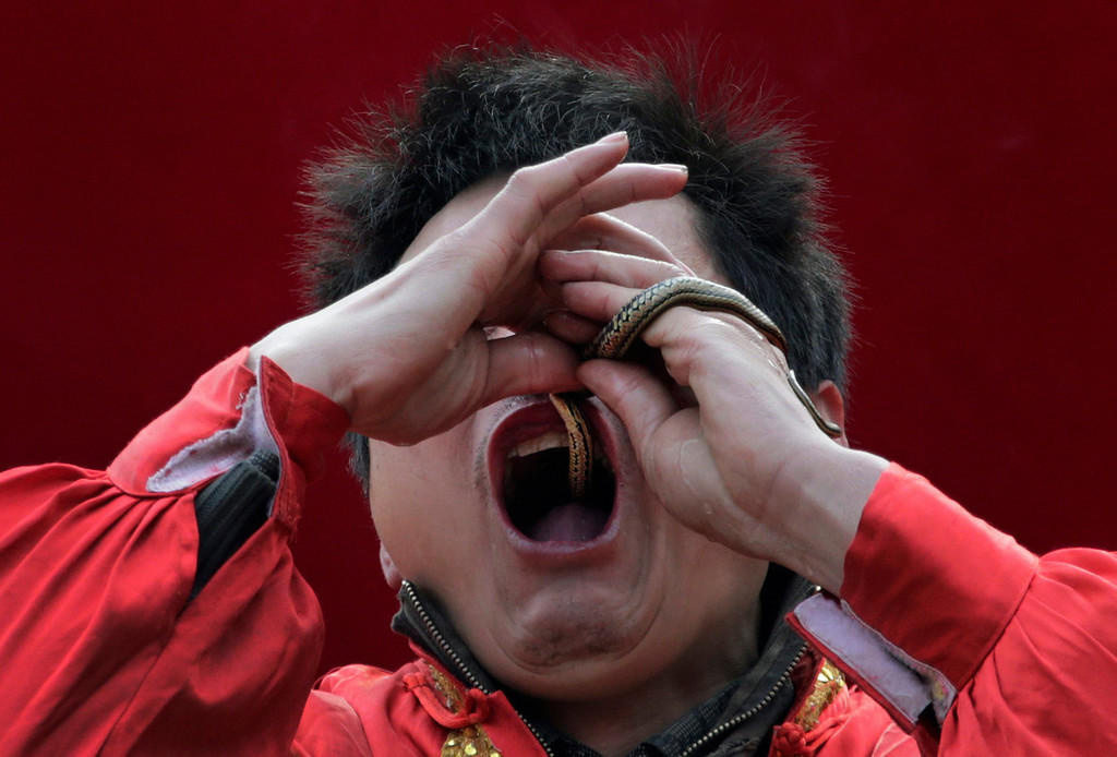. A performer inserts a live snake through his nose and mouth during a performance at the Ditan Temple Fair celebrating the Chinese Lunar New Year in Beijing February 11, 2013.  REUTERS/Petar Kujundzic