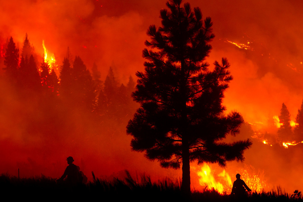 . Firefighters light a back burn near Pine, Idaho while fighting the Elk fire Wednesday Aug. 14, 2013.  (AP Photo/Idaho Statesman, Kyle Green)