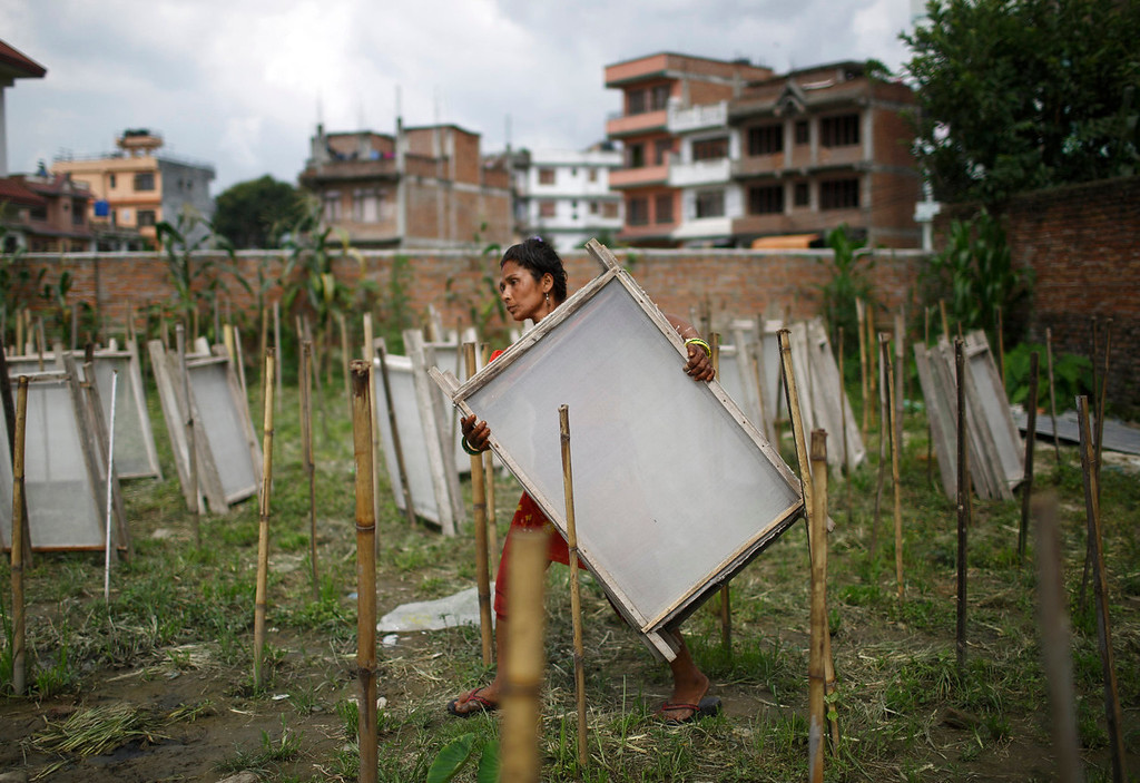 . Kumari Nepali, wife of Arjun Nepali, carries a frame used to make Handmade Nepali Lokta at a factory in Bhaktapur July 17, 2013. According to Arjun he earns 300 Nepalese rupees ($3.15) a day working at a factory from which he runs his house and sends his three sons to a government school. Lokta papers are made up of fibrous inner bark of Lokta bushes that are found above 5,000 m above sea level. According to factory owner Shyam Hari Kadel most of the papers that he produced are exported to countries like Germany and Britain.  REUTERS/Navesh Chitrakar