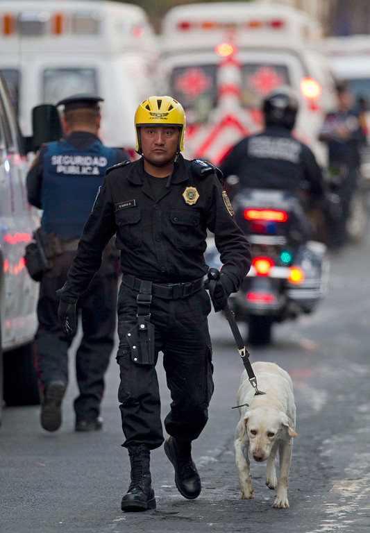 . An emergency responder walks with a search dog as emergency workers and firefighters search for trapped survivors at the site on an explosion in a building at Mexico\'s state-owned oil company PEMEX complex, in Mexico City, Thursday Jan. 31, 2013.   (AP Photo/Eduardo Verdugo)