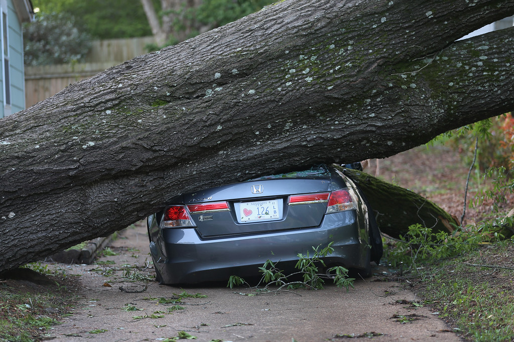 . A large tree is seen resting on a car after a tornado struck on Monday, on April 30, 2014 in Tupelo, Mississippi.  Deadly tornadoes ripped through the region over the last days, leaving more than a dozen dead.  (Photo by Joe Raedle/Getty Images)