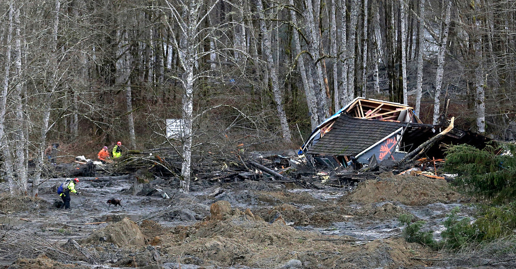 . Searchers with a dog work near a demolished home at the scene of a deadly mudslide, Tuesday, March 25, 2014, in Oso, Wash.  (AP Photo/Elaine Thompson)