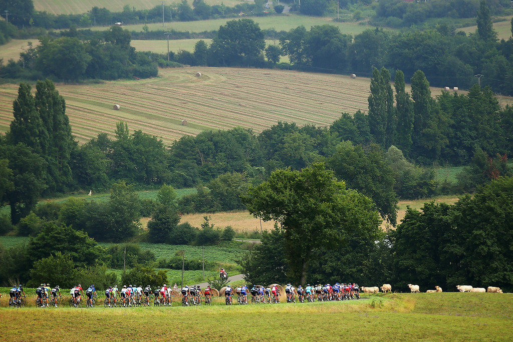. The peloton in action during the nineteenth stage of the 2014 Tour de France, a 208km stage between Maubourguet Pays du Val d\'Adour and Bergerac, on July 25, 2014 in Bergerac, France.  (Photo by Bryn Lennon/Getty Images)