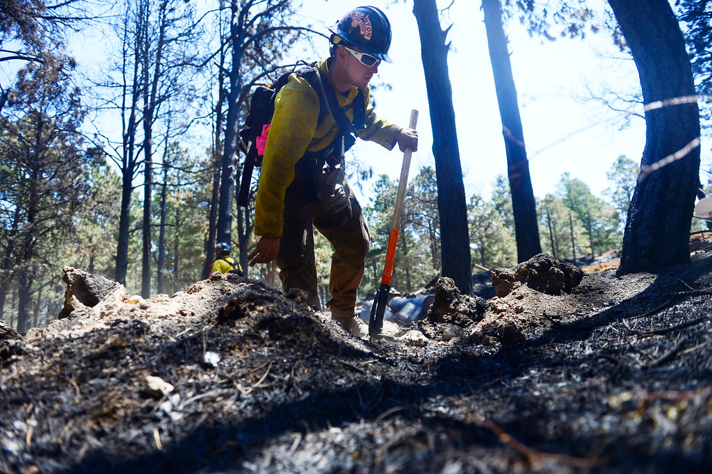. BLACK FOREST, CO - JUNE 19: Long Canyon Wildland firefighter Sean Sortland checks for hotspots as he and his crew coal trail at a burned property on Pine Glen Drive. Only one home on the loop of Pine Glen Drive burned in the fire. (Photo by AAron Ontiveroz/The Denver Post)