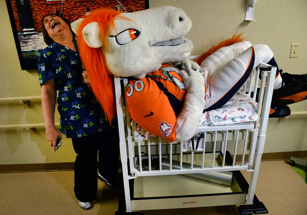 . Registered nurse Paulette Spittler, gets a laugh out of Miles, the Broncos Mascot, as he sits in a bed made for an infant on the floor of the Neonatal  Intensive Care Unit at the  Rocky Mountain Hospital for Children in Denver, Co on January 14, 2014, before visiting with the children.   (Photo By Helen H. Richardson/ The Denver Post)