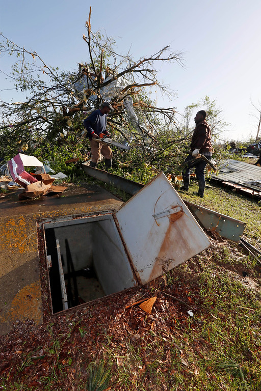 . Workers cut a tree behind an open storm shelter in Louisville, Miss., Tuesday, April 29, 2014. Numerous businesses, residences and the community hospital were destroyed or heavily damaged after a tornado hit the east Mississippi community Monday. Louisville is the county seat and home to about 6,600 people. (AP Photo/Rogelio V. Solis)