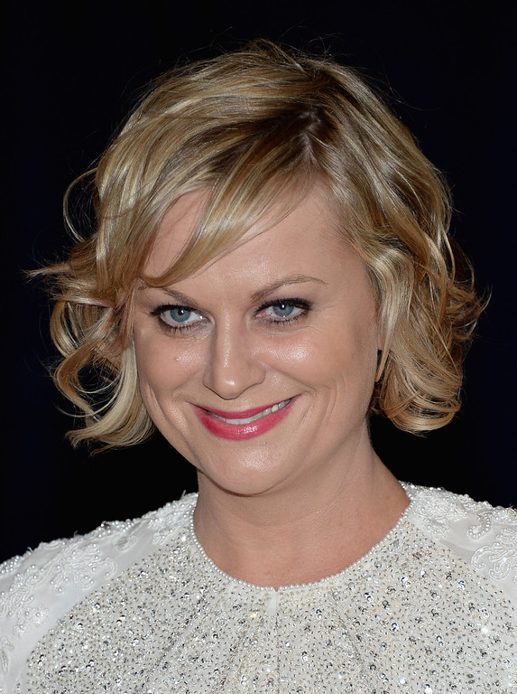 . WASHINGTON, DC - APRIL 27:  Amy Poehler attends the White House Correspondents\' Association Dinner at the Washington Hilton on April 27, 2013 in Washington, DC.  (Photo by Dimitrios Kambouris/Getty Images)