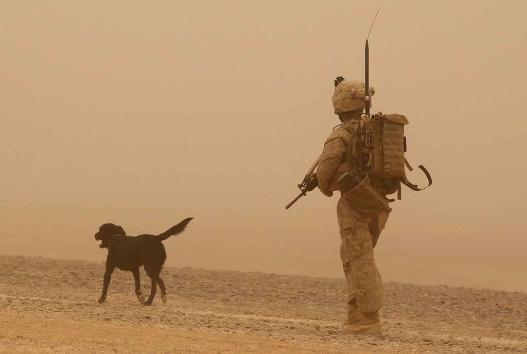 ". A U.S. marine from 1st Light Armored Reconnaissance Battalion, Jump Platoon walks with sniffer dog ""Conn\"" while on patrol near a sandstorm in a desert in Helmand, Afghanistan September 13, 2010.    REUTERS/Erik de Castro"