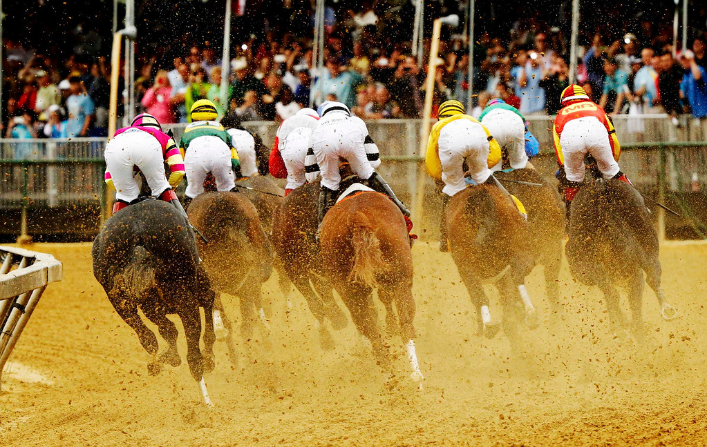 . Horses take the run at the 138th running of the Preakness Stakes at Pimlico Race Course in Baltimore, Maryland May 18, 2013.  REUTERS/Kevin Lamarque