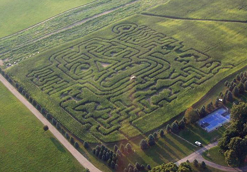 . This 2013 photo provided by Harvest Moon Acres shows the farm\'s corn field maze made by Maize Quest in Gobles, Mich. (AP Photo/Harvest Moon Acres)