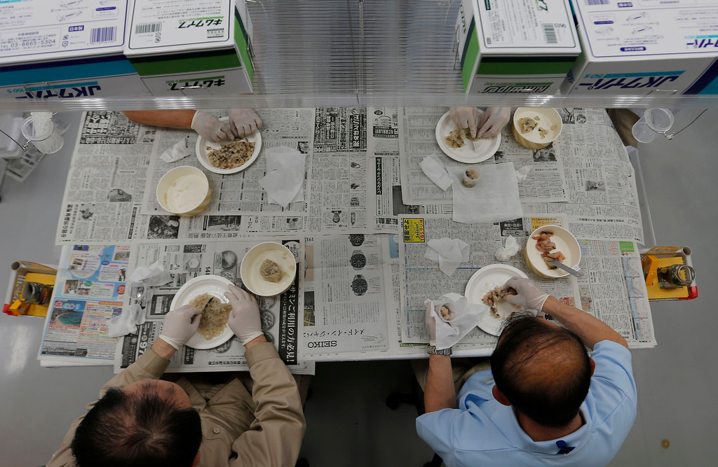 . Laboratory technicians chop fish, which was caught close to the tsunami-crippled Fukushima Daiichi nuclear plant, while preparing it for cesium testing at Fukushima Agricultural Technology Centre in Koriyama, Fukushima prefecture May 28, 2013. Commercial fishing has been banned near the tsunami-crippled nuclear complex since the March 2011 tsunami and earthquake. The only fishing that still takes place is for contamination research, and is carried out by small-scale fishermen contracted by the government. Picture taken May 28, 2013. REUTERS/Issei Kato