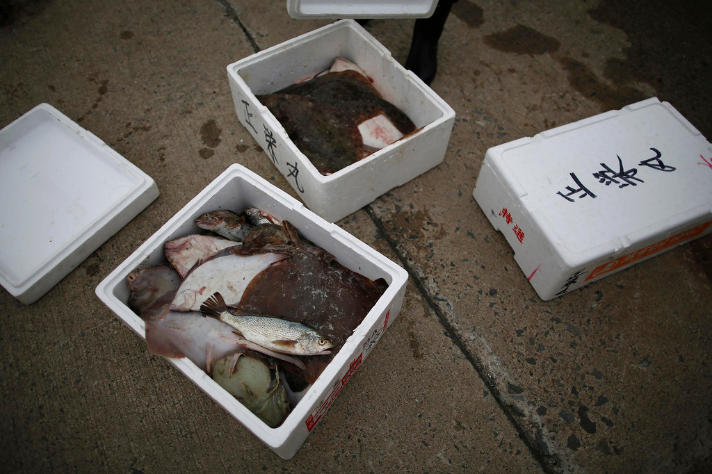 """. Flatfish, stonefish, flounder, greenling and ray caught by the \""""Shoei Maru\"""" fishing boat lie in boxes in Iwaki, Fukushima prefecture May 26, 2013. Operated by 80-year-old Shohei Yaoita and 71-year-old Tatsuo Niitsuma, the boat\'s catch will be used to test for radioactive contamination in the waters near the Fukushima Daiichi nuclear facility. Commercial fishing has been banned near the tsunami-crippled nuclear complex since the March 2011 tsunami and earthquake. The only fishing that still takes place is for contamination research, and is carried out by small-scale fishermen contracted by the government. Picture taken May 26, 2013. REUTERS/Issei Kato"""