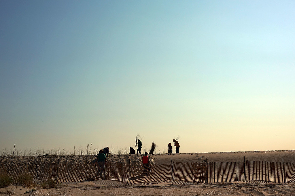 . Residents plant beach grass on protective sand dunes in the Breezy Point neighborhood on the one-year anniversary of Hurricane Sandy on October 29, 2013 in the Queens borough of New York City.   (Photo by Spencer Platt/Getty Images)