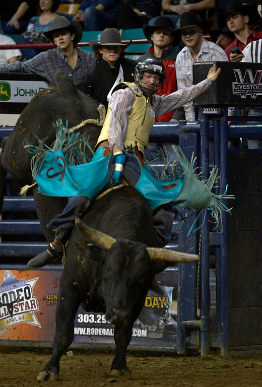 . DENVER, CO- JANUARY 27: Brett Stall of Detroit Lakes, Minnesota, hangs on during the bull riding event.  The final day of the 2013 National Western Stock show was Sunday, January 27th.  One of the big events for the day was the PRCA Pro Rodeo finals in the Coliseum.  The event featured bareback riding, steer wrestling, team roping, saddle bronc riding, tie down roping, barrel racing and bull riding.  (Photo By Helen H. Richardson/ The Denver Post)