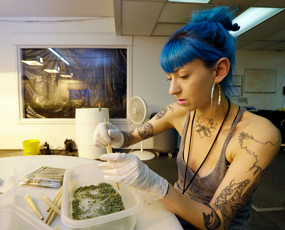 . In this July 1, 2014, photo, Stevie Askew, a worker at Sea of Green Farms, packs recreational marijuana into blunts that will be sold in stores when legal recreational pot sales begin in Washington state on Tuesday, July 8, 2014. Workers at the establishment spent all weekend packaging to have supplies ready for stores that were expected to be granted sale licenses. (AP Photo/Ted S. Warren)