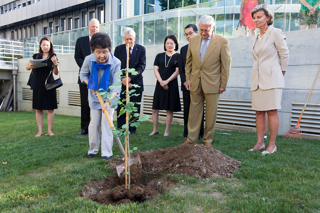 . Hiroko Miyahara, who survived the nuclear bombing of the city of Hiroshima in 1945, plants a tree Ginko biloba (descendent of a 200 year old tree that survived the atomic bombing of Hiroshima in 1945) in front her daughter Akiko Perona, left, and from 2nd left, Achim Halpaap, Associate Director of UNITAR, Francois Bugnion, member of ICRC Assembly,  Japanese Ambassador Takashi Okada and his wife, Olivier Vodoz, Vice President of ICRC, and Geneva State Councillor Isabel Rochat, during a ceremony to recall the dangers of nuclear weapons use at the ICRC headquarters, in Geneva, Switzerland, Tuesday,  Aug. 6, 2013. (AP Photo/Keystone, Salvatore Di Nolfi)