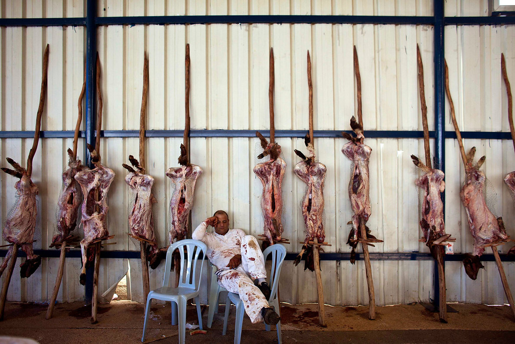 . A member of the Samaritan sect takes a nap near sheep carcasses before they are grilled during a traditional Passover sacrifice ceremony on Mount Gerizim, near the West Bank city of Nablus May 4, 2012. The Samaritans, who trace their roots to the biblical kingdom of Israel in what is now the northern occupied West Bank, observe religious practices similar to those of Judaism. REUTERS/ Nir Elias
