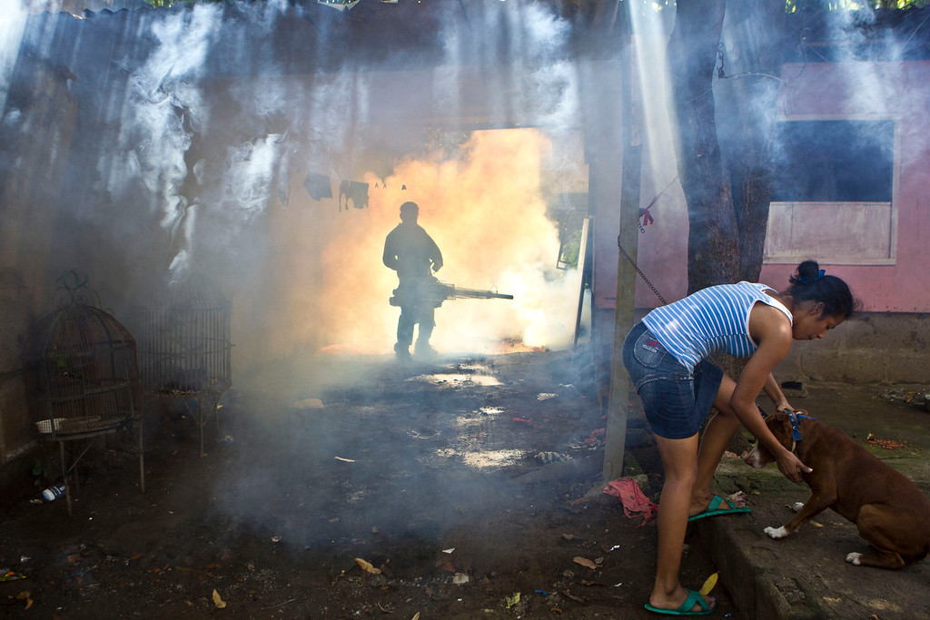 . A worker from the Nicaraguan health ministry fumigates a resident\'s front yard in Managua, Nicaragua, Thursday, Oct. 31, 2013. According to the government, more than 5,000 cases of dengue have been reported this year and has claimed 14 lives. (AP Photo/Esteban Felix)