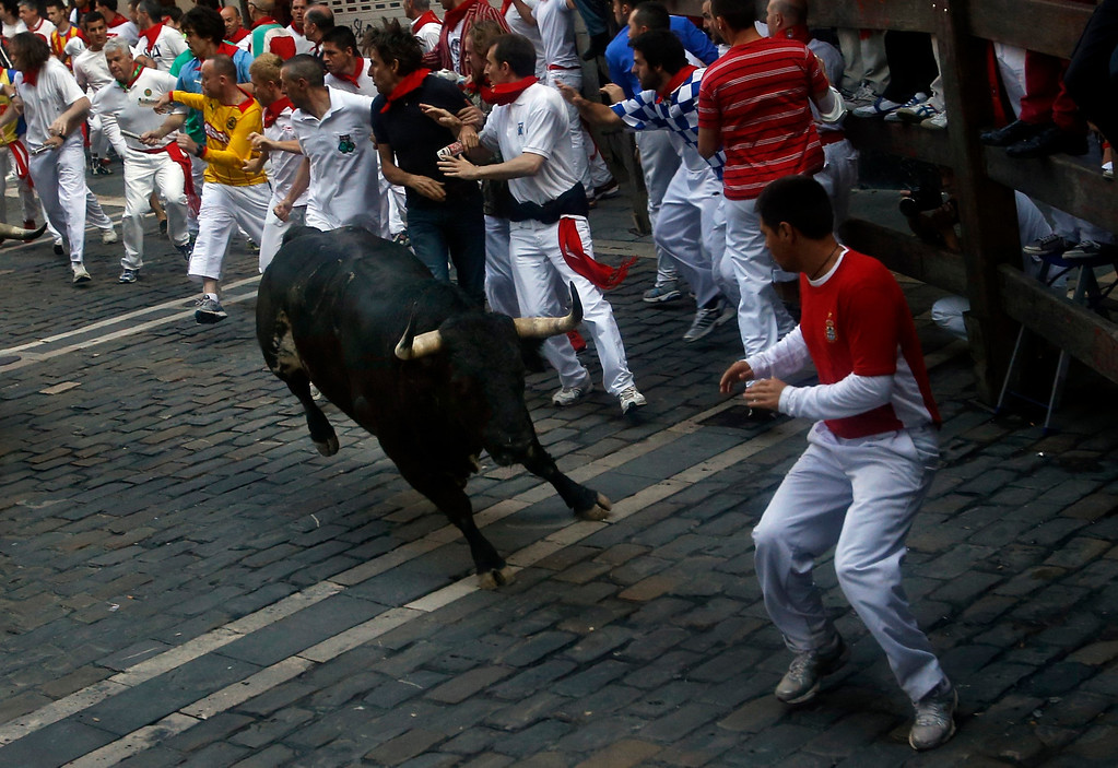 . A Torrestrella fighting bull heads towards a runner as it takes the Estafeta curve during the fifth running of the bulls of the San Fermin festival in Pamplona July 11, 2013. No serious injuries were reported in a run that lasted two minutes and forty five seconds, according to local media. REUTERS/Susana Vera