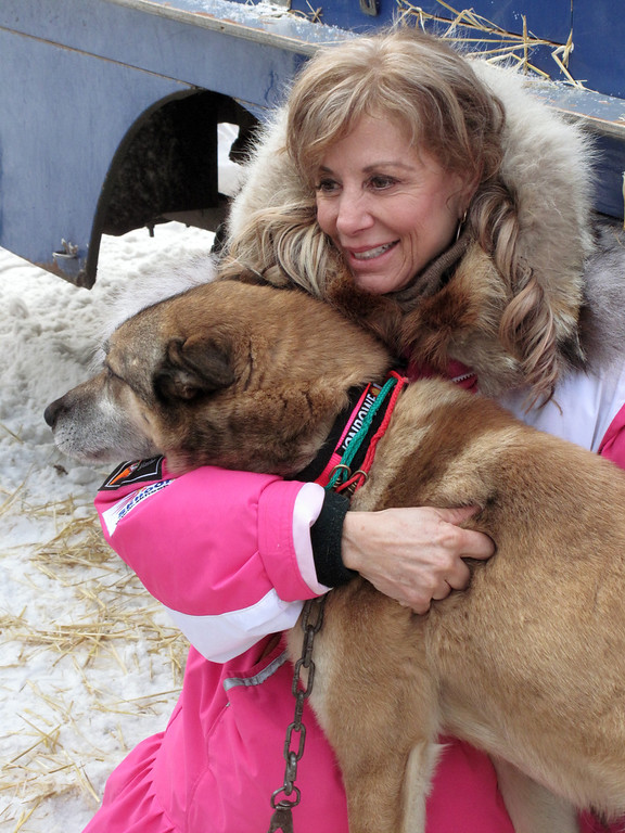 . Veteran musher DeeDee Jonrowe poses with a member of her team at the ceremonial start of the Iditarod Trail Sled Dog Race, Saturday, March 2, 2013, in Anchorage, Alaska. 65 teams will be making their way through punishing wilderness toward the finish line in Nome on Alaska\'s western coast 1,000 miles away. (AP Photo/Rachel D\'Oro)
