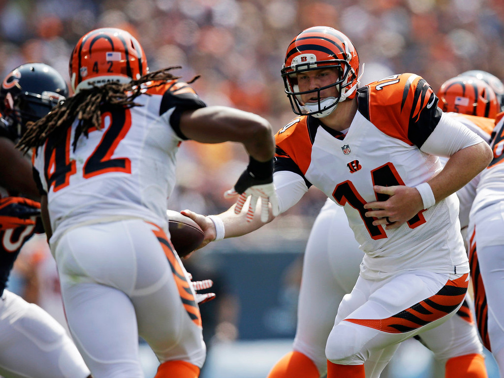 . Cincinnati Bengals quarterback Andy Dalton (14) hands off the ball to running back BenJarvus Green-Ellis (42) during the first half of an NFL football game against the Chicago Bears, Sunday, Sept. 8, 2013, in Chicago. (AP Photo/Nam Y. Huh)