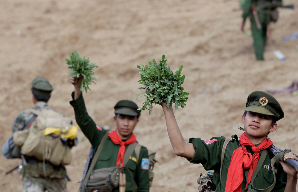 . Soldiers of the Ta-ang National Liberation Army (TNLA), one of the ethnic rebel groups, hold poppy plants after they destroyed a poppy field in Loi Mel Main village, Man Tone Township, Northern Shan State, Myanmar, 16 January 2014. Myanmar\'s opium production in 2013 was expected to reach 870 tons, a 26-per-cent increase year-on-year, for a 13-per-cent increase in cultivated area, the United Nations said.   EPA/NYEIN CHAN NAING