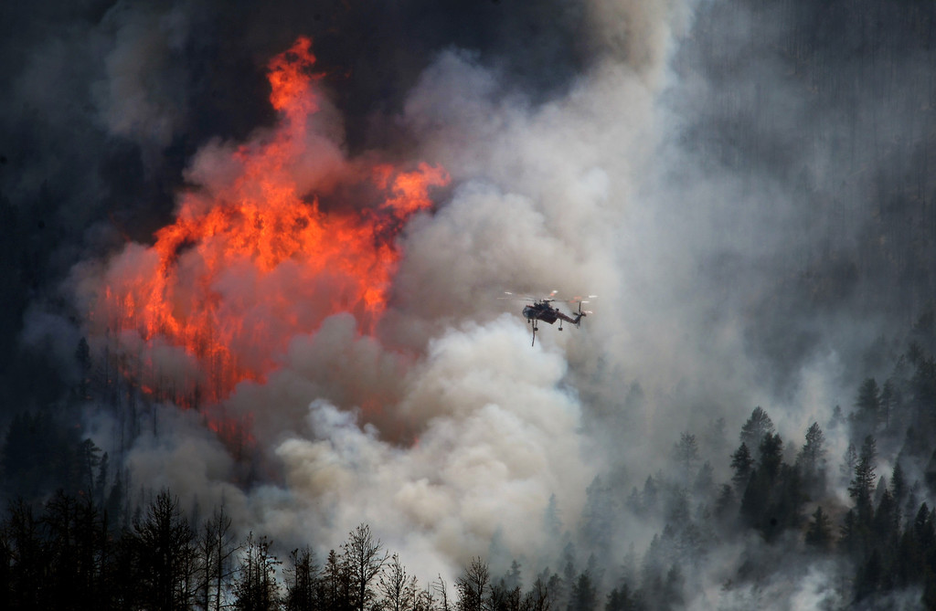 Description of . The Lime Gulch fire was one of dozens of fires in the summer of 2013.  Though it didn't destroy any homes the huge flames that dwarf the helicopter making water drops on it illustrates how severe and devastating fires in the west are becoming.  JEFFERSON COUNTY, CO - JUNE 20:  A helicopter goes in to make a water drop as huge flames burn stands of trees on US Forest Service land on the Lime Gulch Fire off of Foxton Road near Conifer, CO on June 20, 2013.  This new fire is burning almost next to last year's Lower North Fork fire on June 20, 2013.  (Photo by Helen H. Richardson/The Denver Post)