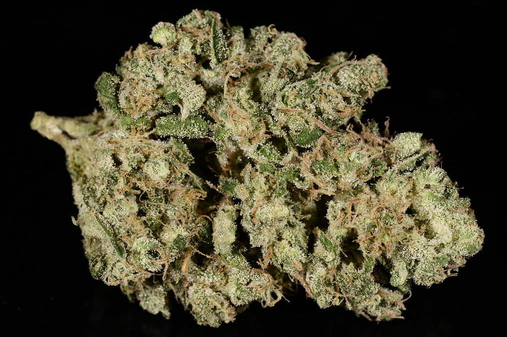 . No. 1: Ghost Train Haze (Ry Prichard, The Cannabist)