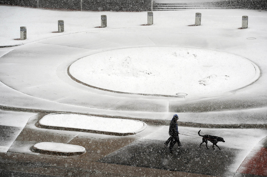 . DENVER, CO. - MARCH 9TH: A couple walk their dog along Buchtel Blvd near South University Blvd in front of The Cable Center at the University of Denver in a steady snowfall Saturday morning, March 9th, 2013(Photo By Andy Cross/The Denver Post)