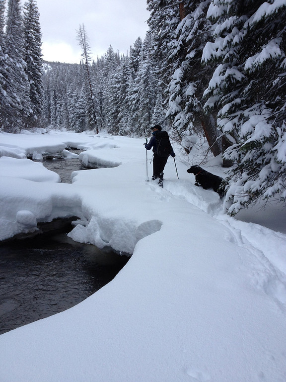 . Steven King and his dog, Rosie, cross-country ski along the Elk River during a backcountry adventure from Vista Verde. (Photo by Kyle Wagner)