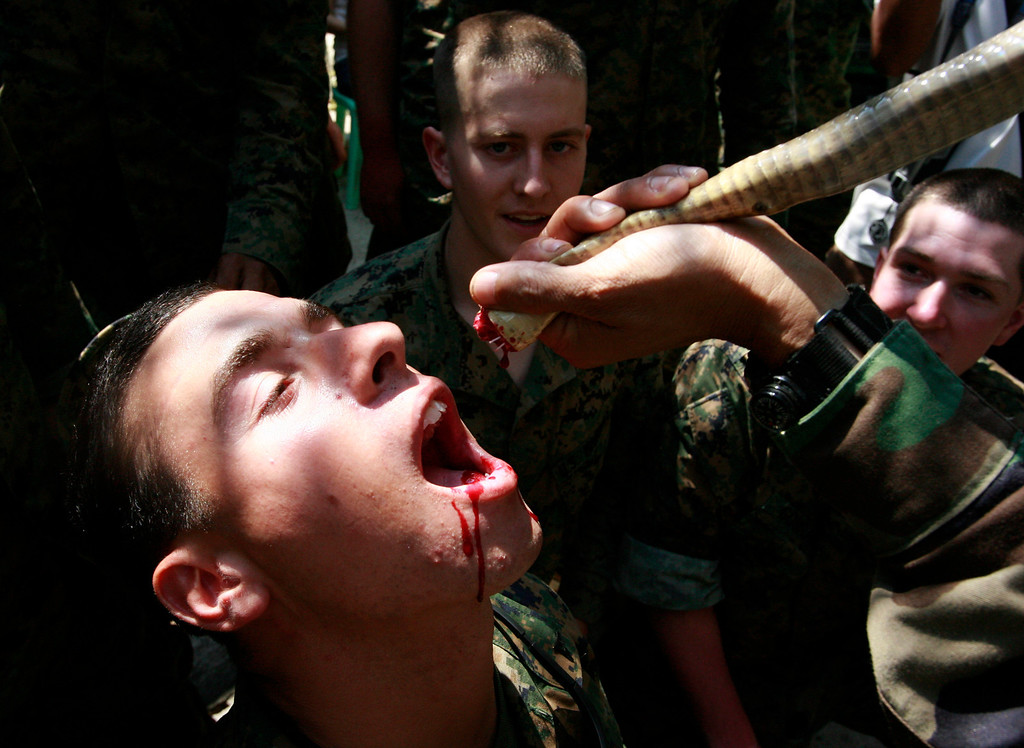 ". A U.S. Marine drinks cobra\'s blood during a jungle survival exercise with Thai Marines as part of ""Cobra Gold 09\"" east of Bangkok February 14, 2009.REUTERS/Sukree Sukplang"