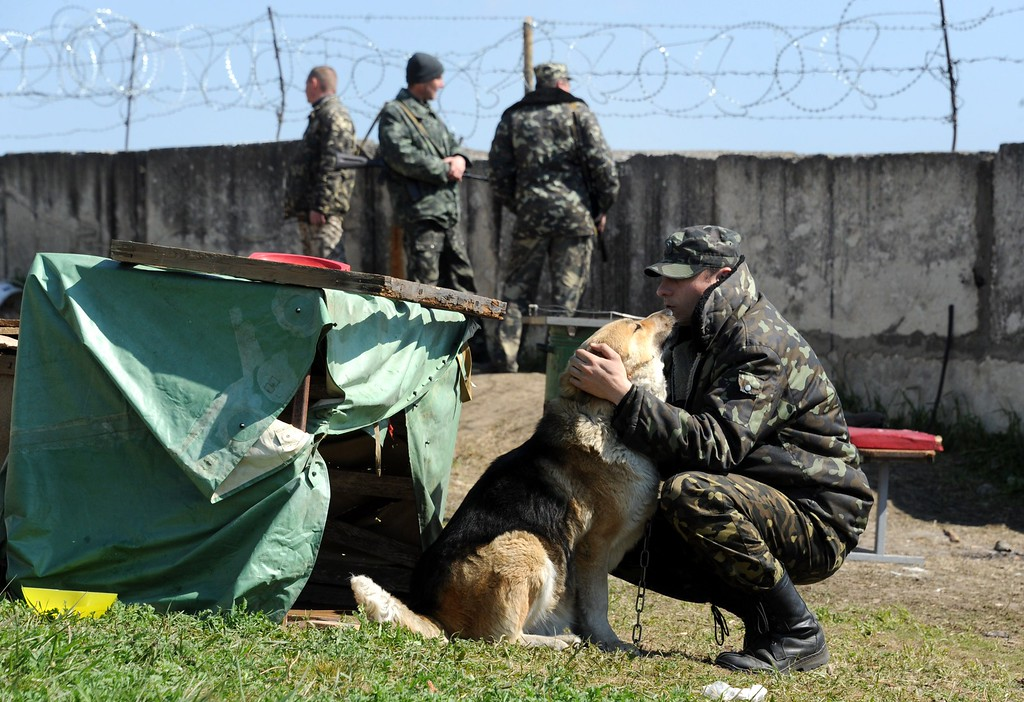 . A Ukrainian soldier pets a dog at the Belbek air force base not far from the city of Sevastopol, in Crimea, on March 21, 2014.  AFP PHOTO / VIKTOR DRACHEV/AFP/Getty Images