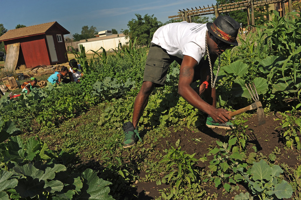""". DENVER, CO - JULY 3:  Ietef Vita, aka, DJ Cavem Moetavation, right, gets rid of weeds as his wife Neambe Leadon Vita, in back at right, and her daughter  Selasia, 3, in blue and Libya, 21 months, in green on left, plant seeds  in the couple\'s gardens at 33rd and Elm street in Denver, CO. on July 3, 2013.  The couple try to grow as much food as possible as part of their vegan and healthy diet.   As part of our \""""Summer of Love\"""" series for the Style section we profile the relationship of DJ Cavem Moetavation (a.k.a. Ietef Vita) and his wife Neambe Vita.  They are proud and longtime Five Points residents. They\'re artists, community activists, musicians, teachers and more.  They espouse the idea of being vegan or vegetarian and promote eating healthfully and organically.  (Photo by Helen H. Richardson/The Denver Post)"""