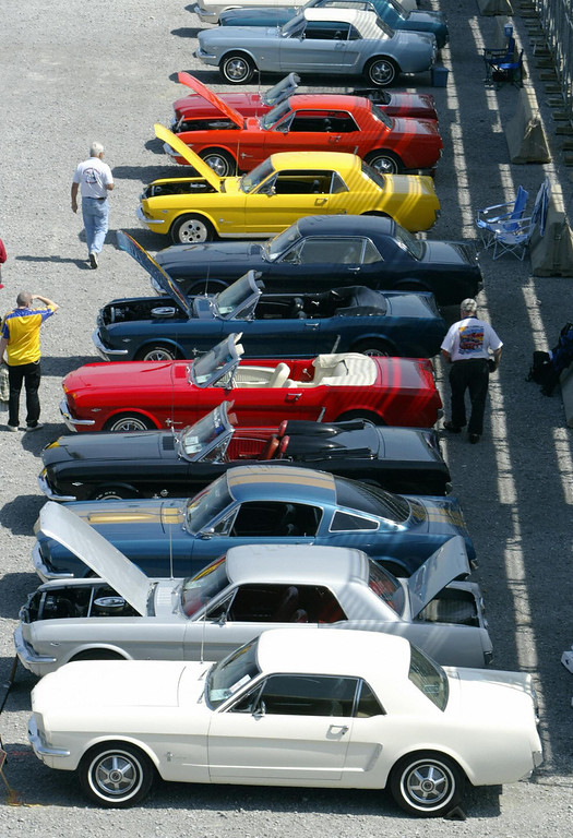 . The older versions of the Ford Mustang with an original 1964 1/2 in the front line up at the celebration of the 40th Anniversary of the Mustang 15 April 2004 at the Nashville Super Speedway in Lebanon, TN. JEFF HAYNES/AFP/Getty Images