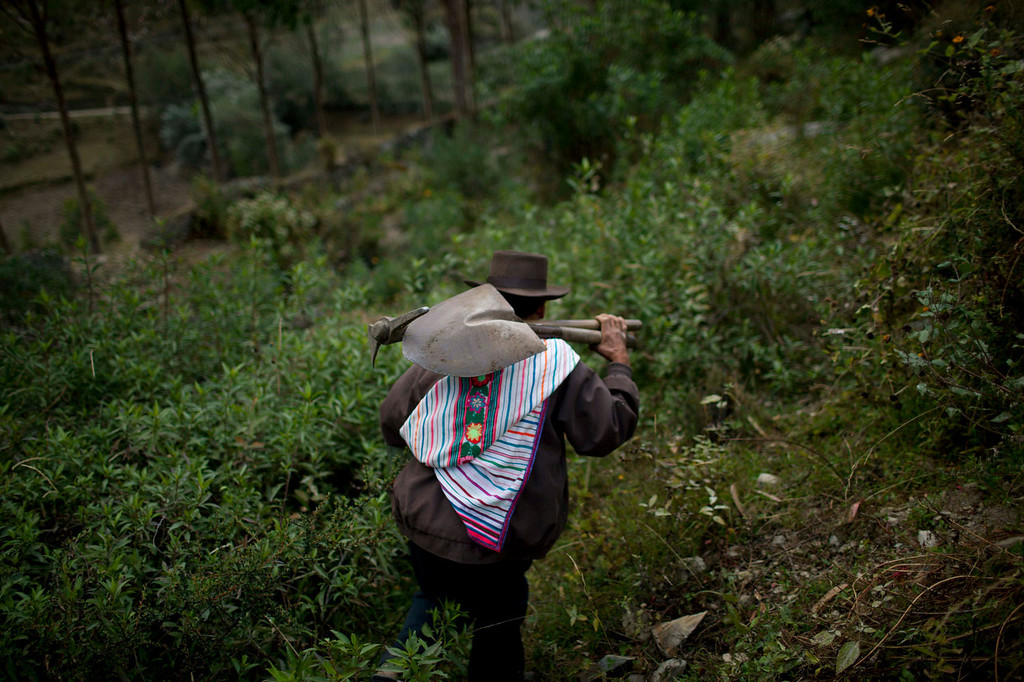 . A man carries  a pick and a shovel over his shoulder, after helping dig 21 graves in preparation for a mass burial at the cemetery in Chaca, Peru. The remains of Chaca villagers who were tortured and killed by Shining Path militants in a 1988 massacre, were released to family members on June 13, 2013 and interred in a mass burial at the Chaca cemetery.   (AP Photo/Rodrigo Abd)