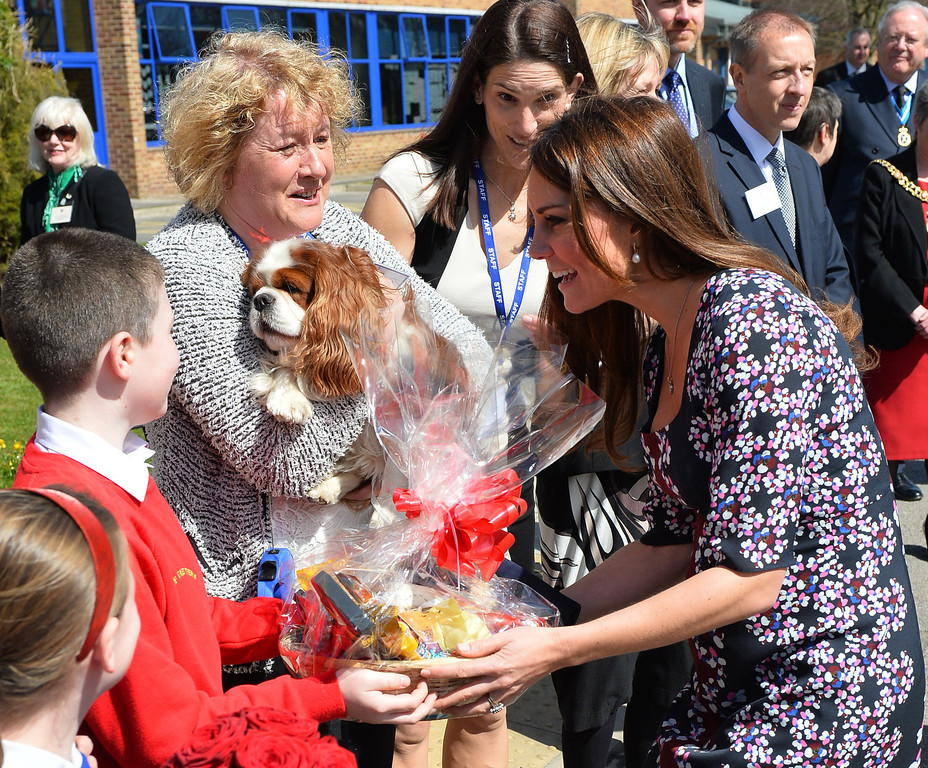 . Catherine, Duchess of Cambridge (R), is presented with a gift for her dog Lupo as she meets the school dog Henry as she arrives to visit The Willows Primary School, Wythenshawe to launch a new school counseling program on April 23, 2013 in Manchester, England. The Duchess of Cambridge met staff and volunteers, teachers and parents at the school as she launched the program which is a partnership between the Royal Foundation, Comic Relief, Place2Be and Action on Addiction.  (Photo by Paul Ellis - WPA Pool/Getty Images)