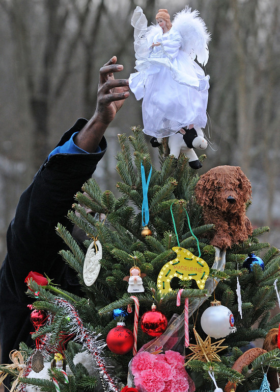 . Staff photos by Tom Kelly IV A man places a white angel on the top of one of the 26 trees, each representing a victim who was killed in the Sandy Hook Elementary School mass shooting.  Funerals for two, six year old students from the Sandy Hook Elementary School in Newtown, CT took part Tuesday December 18, 2012.  Mourners paid their respects at the Saint Rose of Lima Church.