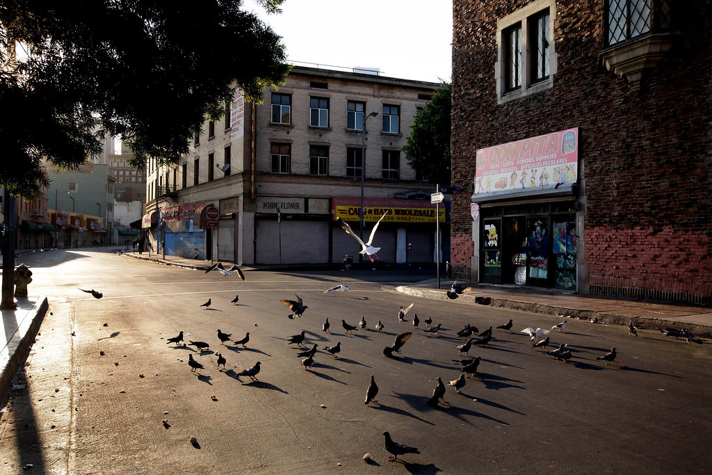 . Birds eat bread crumbs on an empty street of the Skid Row area of Los Angeles on Thursday, July 18, 2013. (AP Photo/Jae C. Hong)