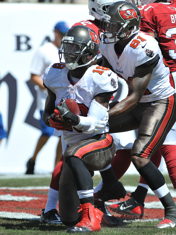 . TAMPA, FL - SEPTEMBER 29:  Wide receiver Mike Williams #19 of the Tampa Bay Buccaneers catches a 1st quarter touchdown pass against the Arizona Cardinals  September 29, 2013 at Raymond James Stadium in Tampa, Florida. (Photo by Al Messerschmidt/Getty Images)