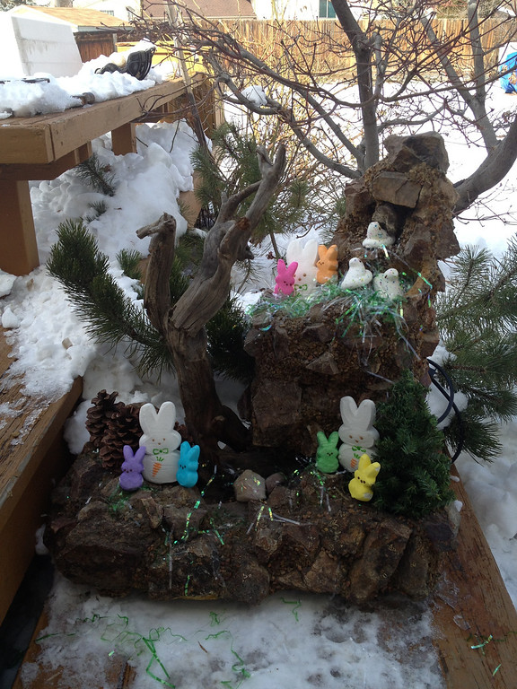 . Big Bunny & Peeps In The Great Rocky Mountains. 