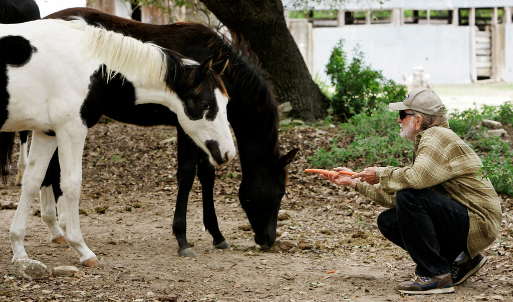 . Country singer Willie Nelson feeds carrots to some of the horses he rescued from slaughter, at his ranch in Spicewood, Texas, Saturday, Nov. 4, 2006. (AP Photo/Eric Gay)