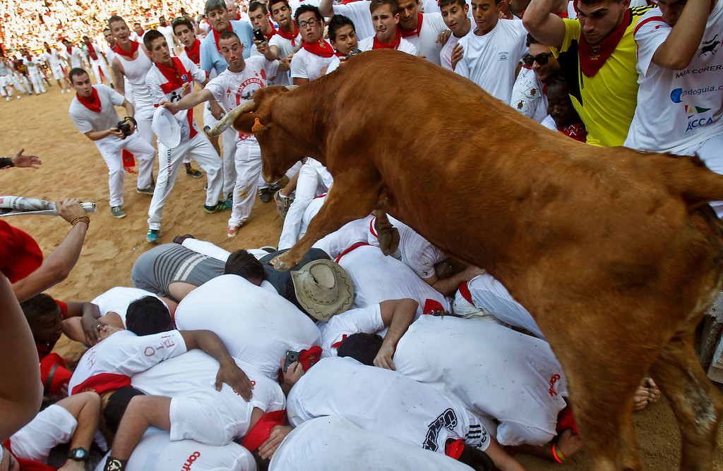 . A cow jumps over revelers lying down on the bull ring as one of them is pushed by the animal,  top center, at the end of the fifth run of the famed San Fermin festival, in Pamplona northern Spain on Thursday, July 11, 2013. One person has been hospitalized after several thousand people tested their speed and bravery by dashing with six fighting bulls through the streets of the northern Spanish city of Pamplona. (AP Photo/Alvaro Barrientos)