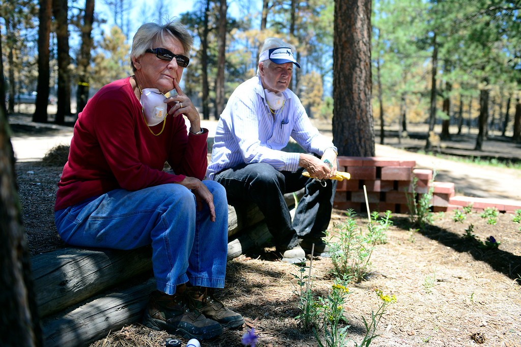 . BLACK FOREST, CO - JUNE 19: Don and Vaneal Burgess sit in a flower bed that survived the Black Forest Fire when their home did not on Shoup Road. The couple owned the home for 35 years, raised their children and entertained their 13 grandchildren. Their daughter also lost her home to the Black Forest Fire near Herring Road. (Photo by AAron Ontiveroz/The Denver Post)