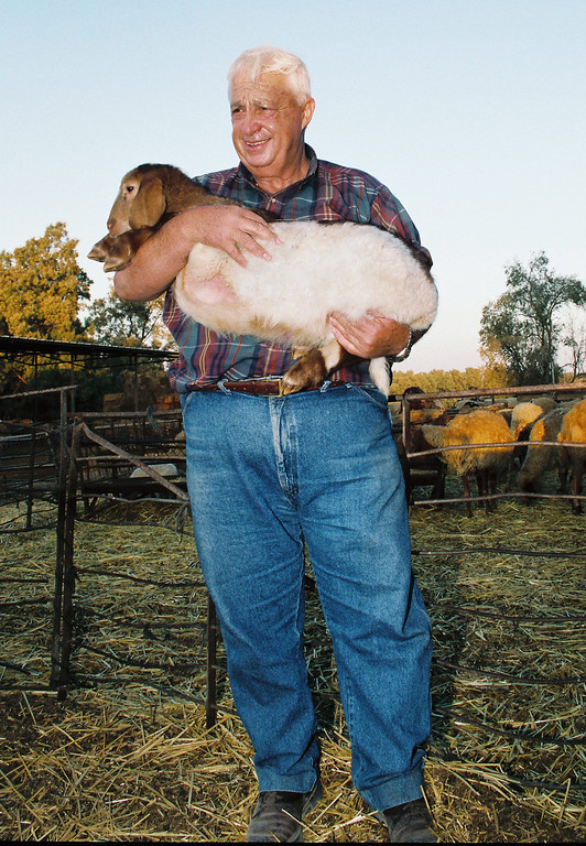 . A photograph dated from September 1993 made available on 11 January 2014 shows former Israeli Prime Minister Ariel Sharon with one of his sheep during a photo session on his farm in Shikmim, southern Israel.   EPA/GIDEON MARKOWICZ